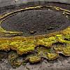 Marathon de Feu – Archipel du Vanuatu, le vent sculpte les lichens de la caldeira